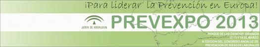 PREVEXPO 2013